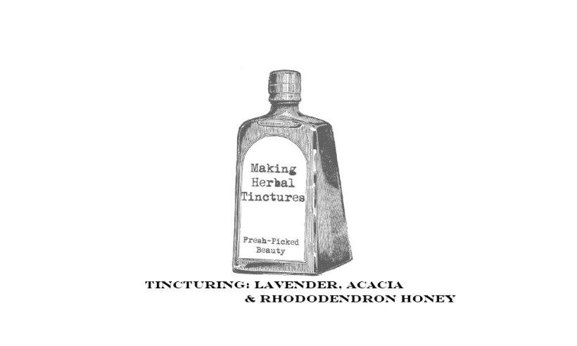 lavender-rhododendron-acacia