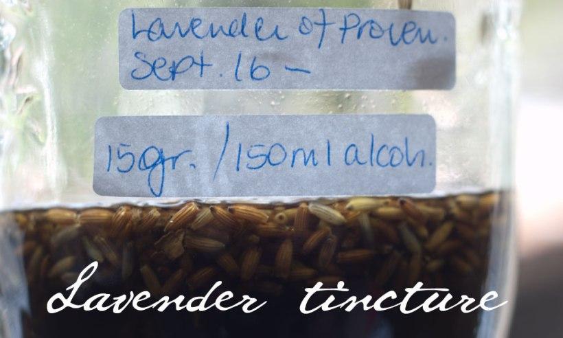 lavender-tincture