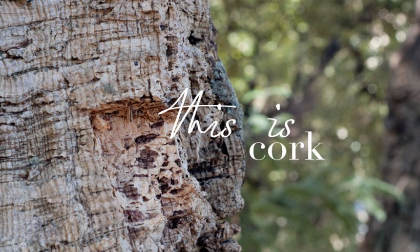 this-is-cork1