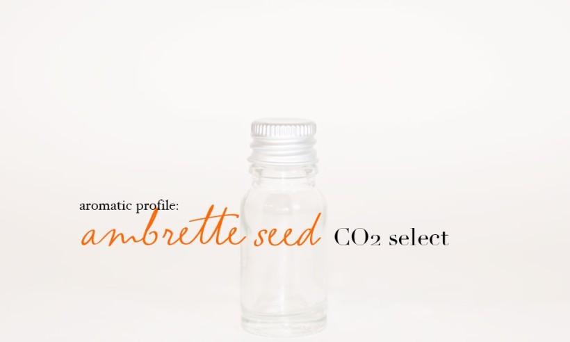 ambrette-seed-co2-select-1000x600