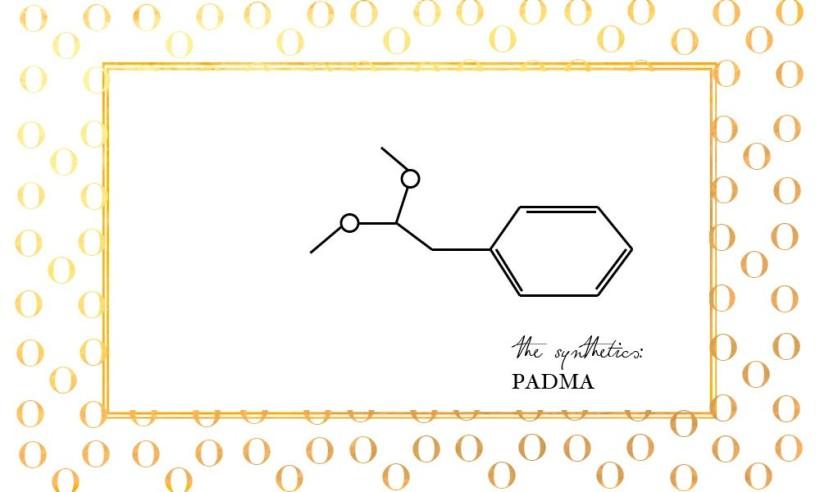 padma-1000x600