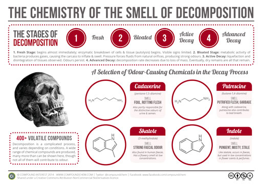 chemistry-of-decomposition