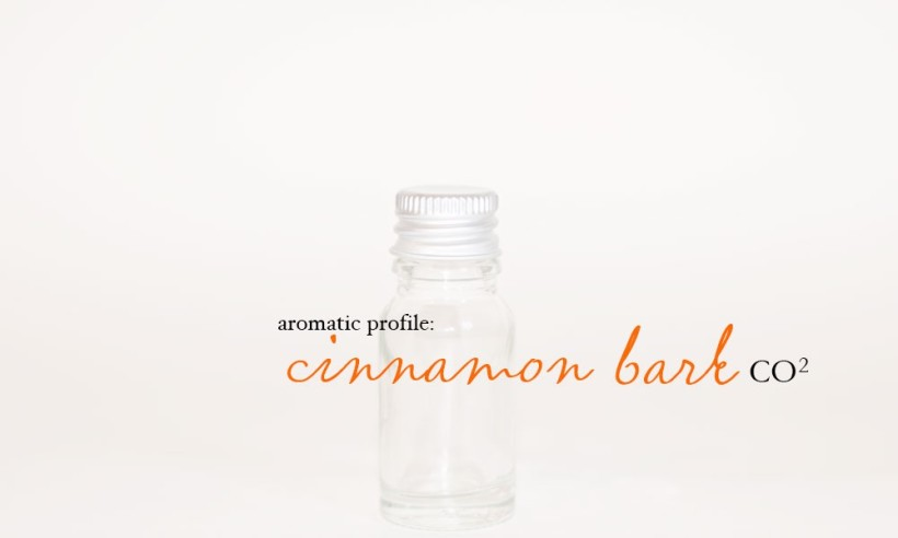 cinnamon-bark-co2-1000x600