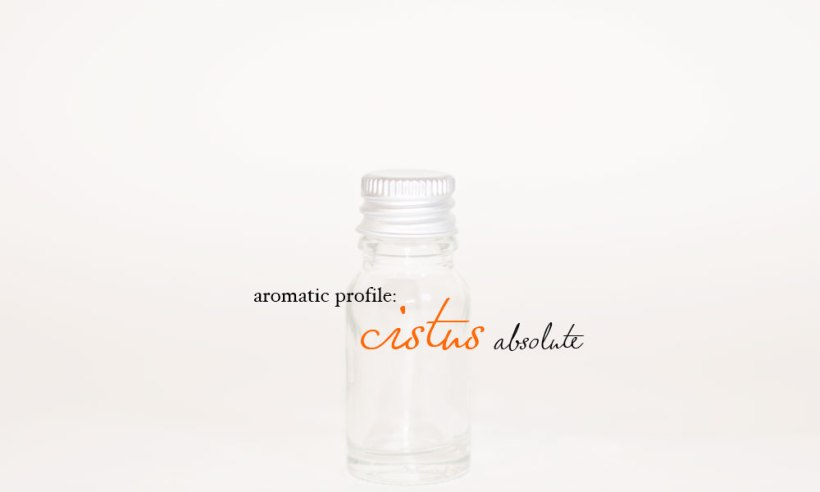 cistus-absolute