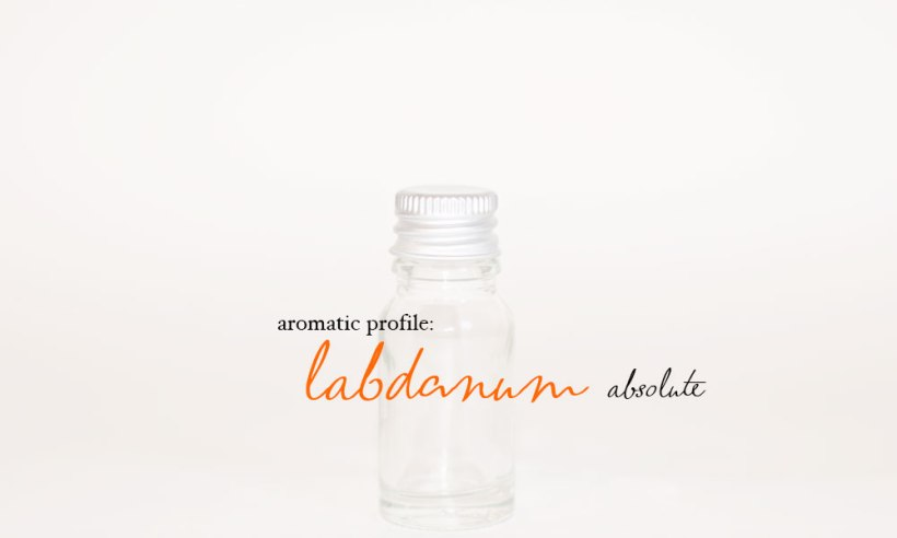 labdanum-absolute