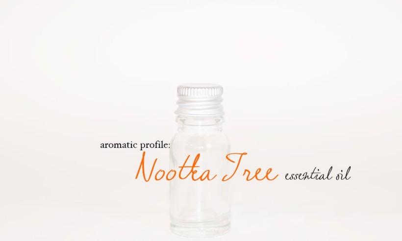 nootka-tree-1000x600