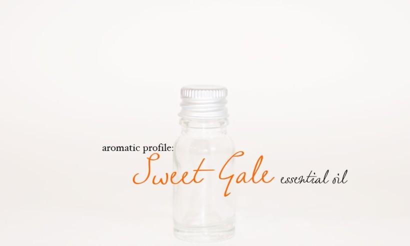 sweet-gale-1000x600