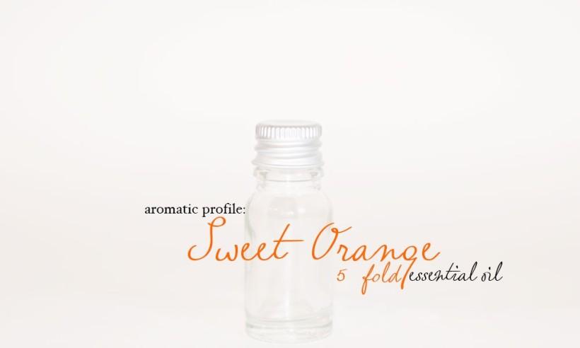 sweet-orange-5fold-1000x600